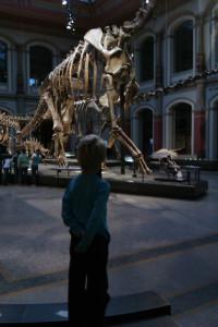 Museum für Naturkunde er et hit for de fleste børn.